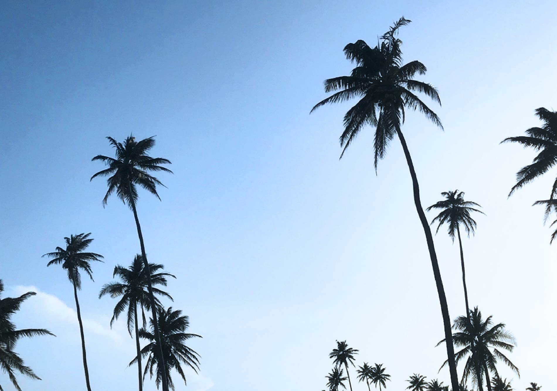 Dorado-Beach-Ritz-Carlton-Reserve_11