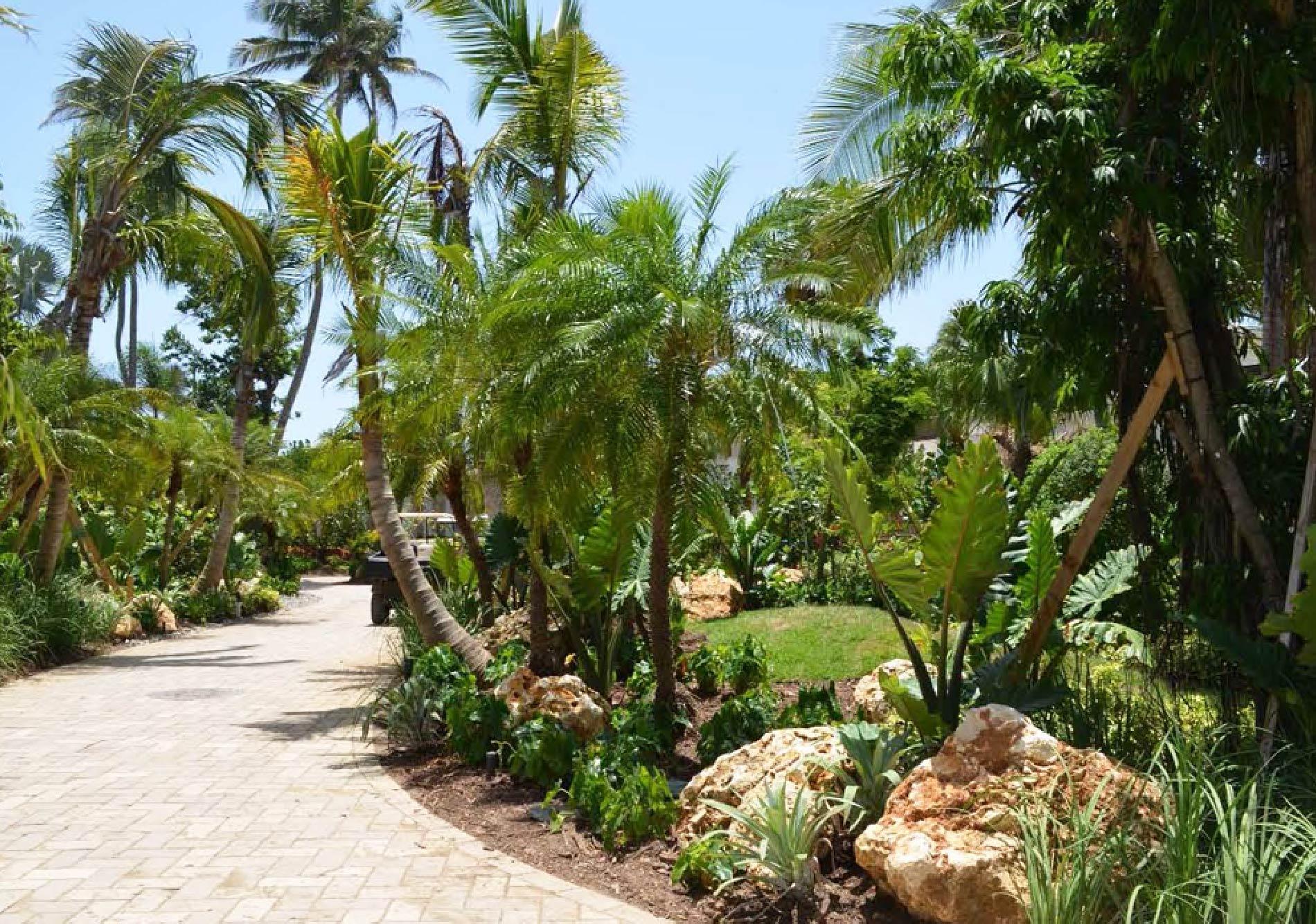 Dorado-Beach-Ritz-Carlton-Reserve_12