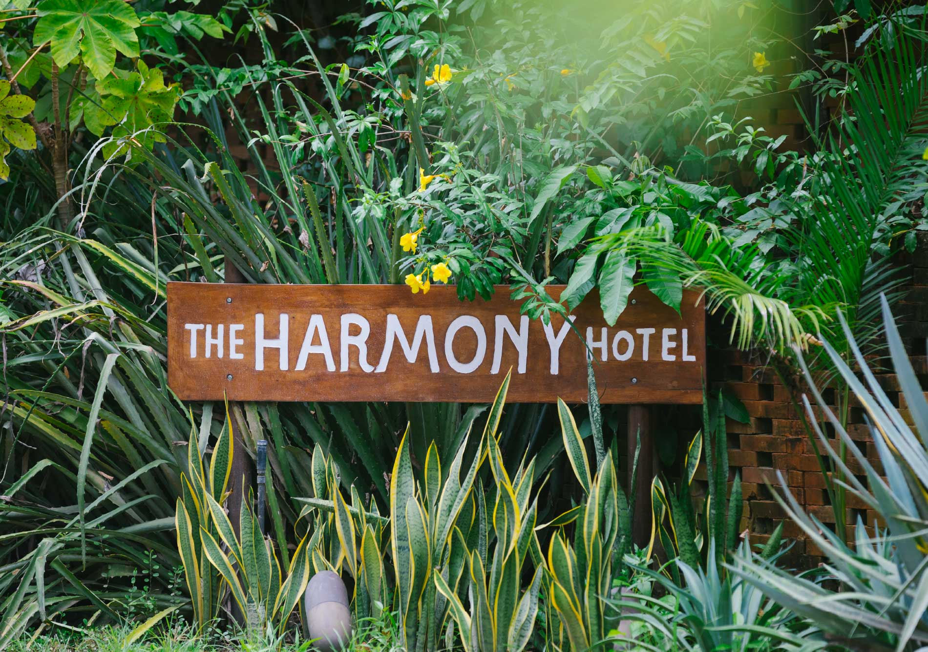 Harmony-Projects-Hotel_24