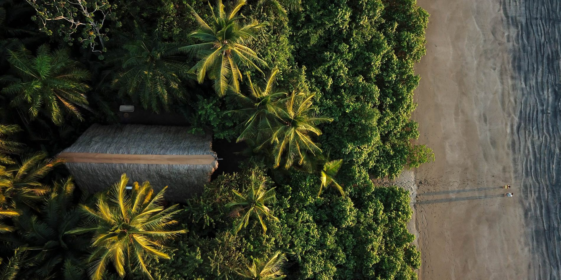 VIDA_Isla_Palenque_Cover