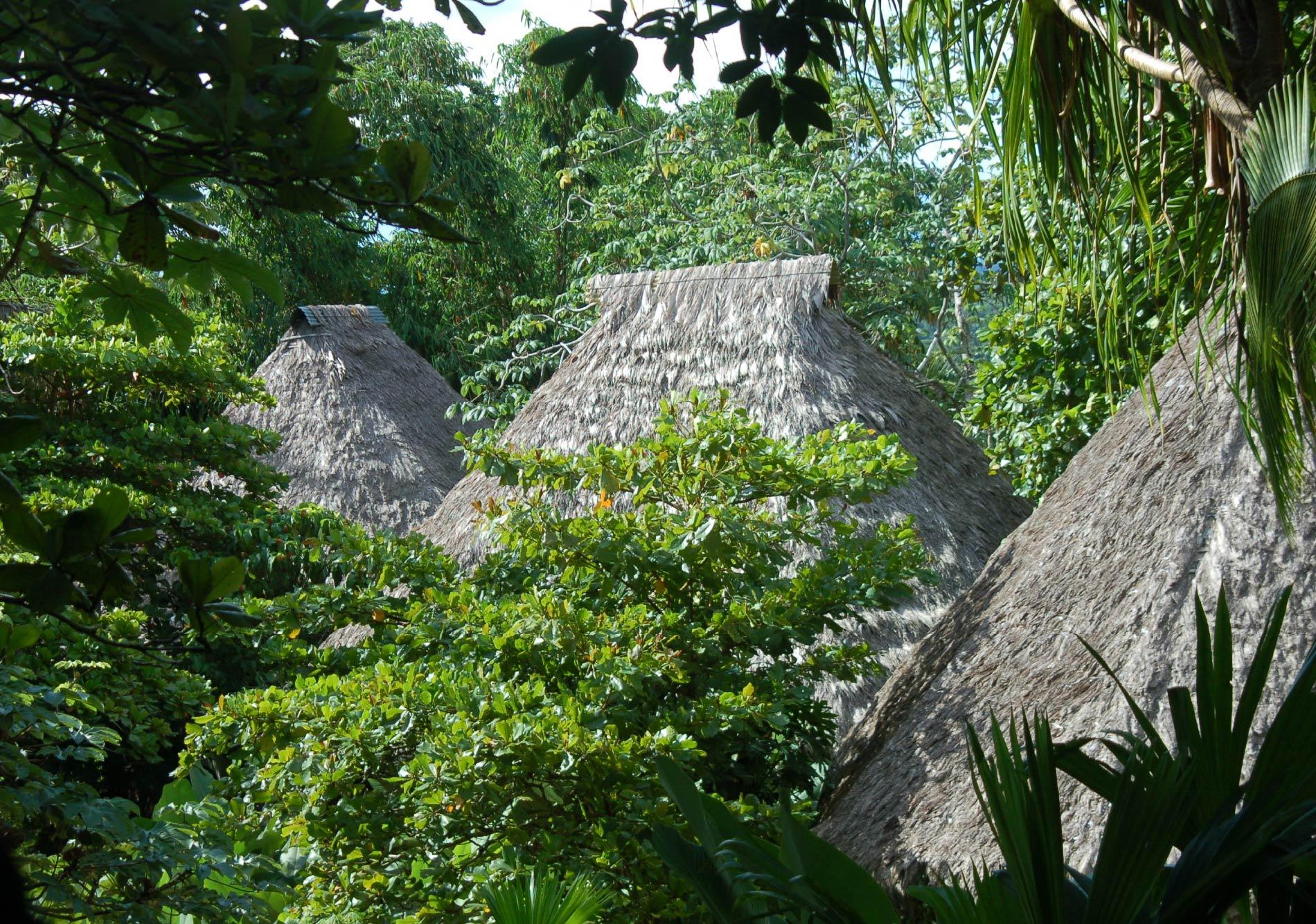 Lapa Rios Ecolodge Vida Masterplanning Design