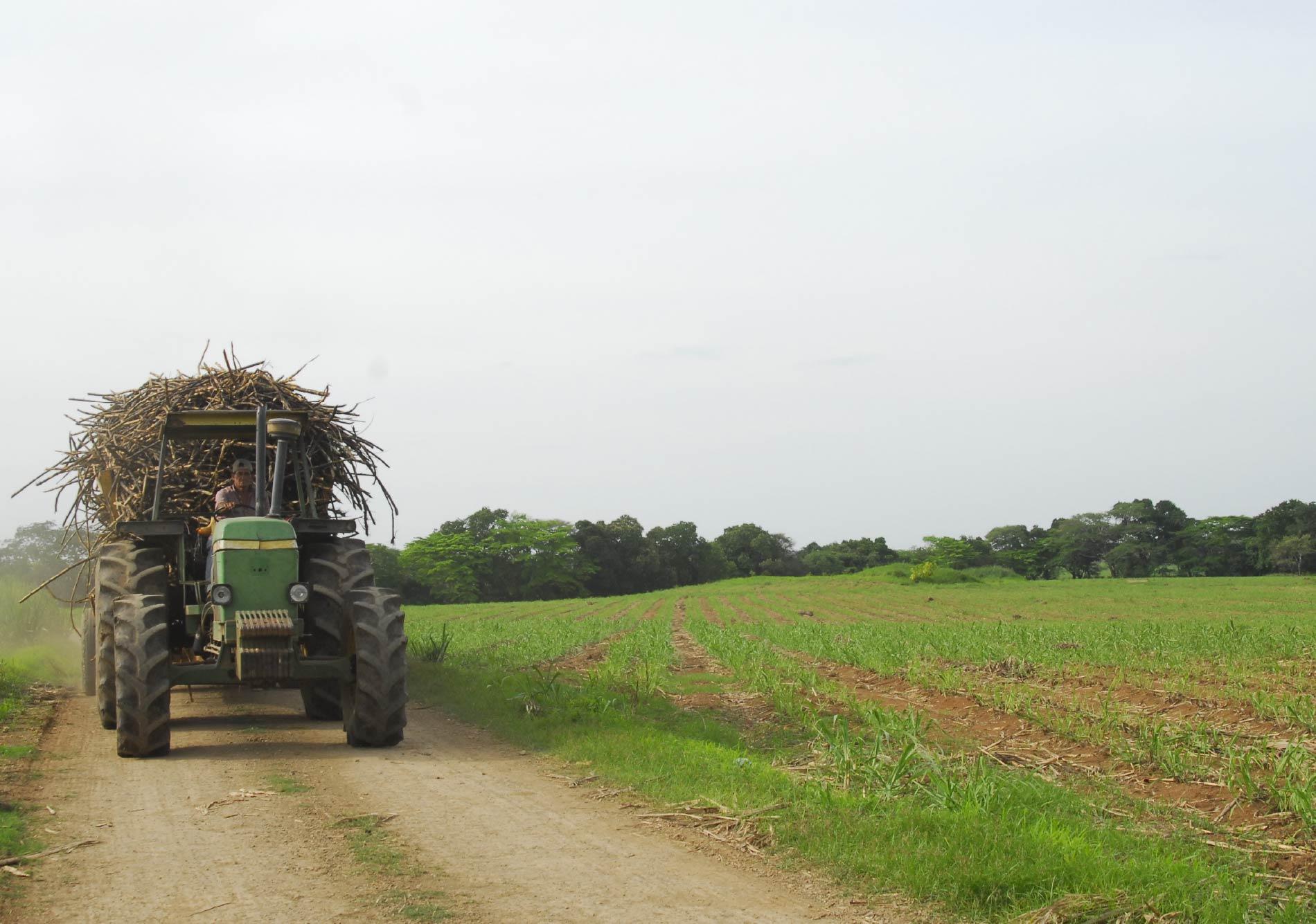 Rural-Planning_Vida_12